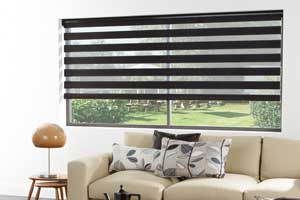 Electric vision and visage blinds